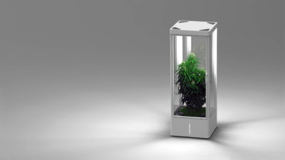 Growth Box