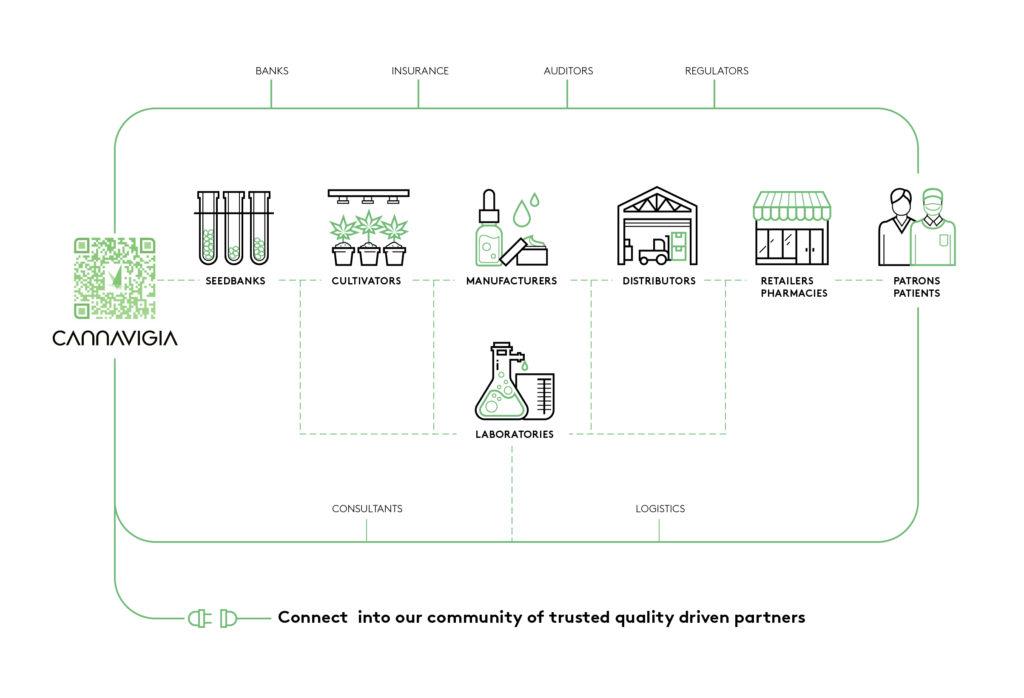 Digitalisierung: Beschleuniger für einen globalen Cannabis-Standard